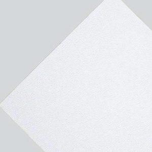 PLAFON BPB GRABADA .61 X .61 L S CJA